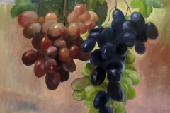 grapes-on-a-wire-copy